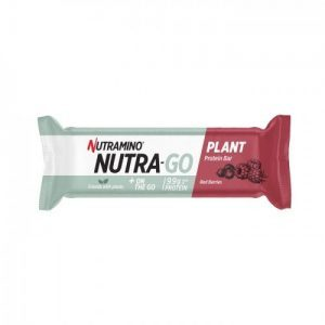 Nutra go protein bar berries